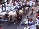 Bulls Run Over Fan in Pamplona