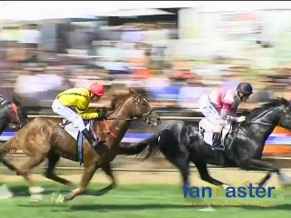Horse Racing Down Under