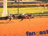 Fantastic Play-by-Play Broadcast During 2010 Breeders Cup